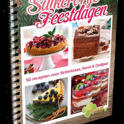 Suikervrije-Feestdagen-Receptenboek